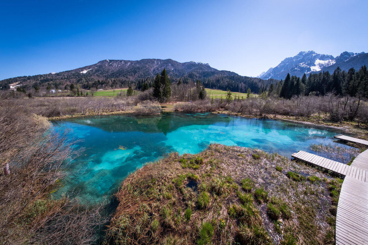 Nature reserve Lake Zelenci near Kranjska Gora