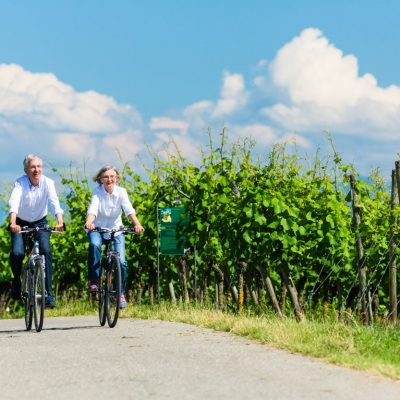 Older couple cycling on the road next to Goriska Brda vineyards