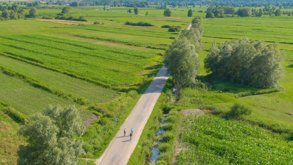 Ljubljana Marshes and cyclists on the road