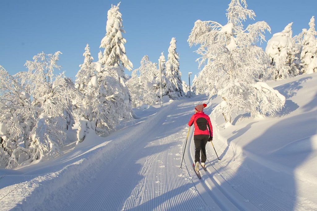 Lady on cross country skiing