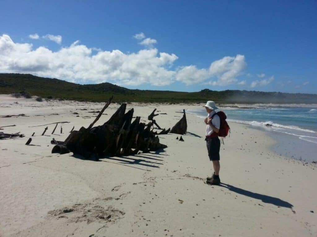 Tourist watches shipwreck on the beach