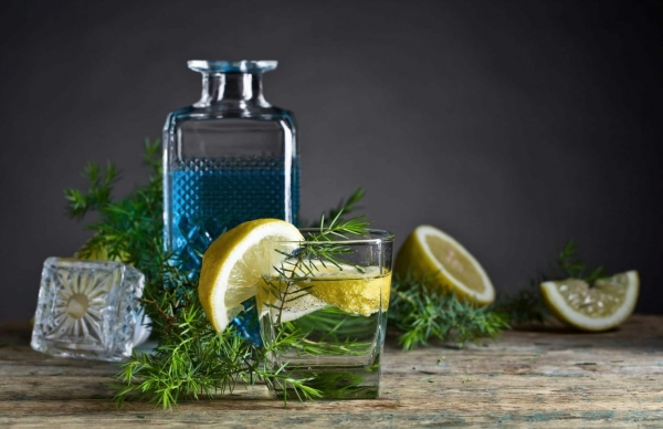 Gin bottle, glass and all ingredients for a cocktail