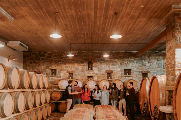 Group visiting wine cellar Goriska brda
