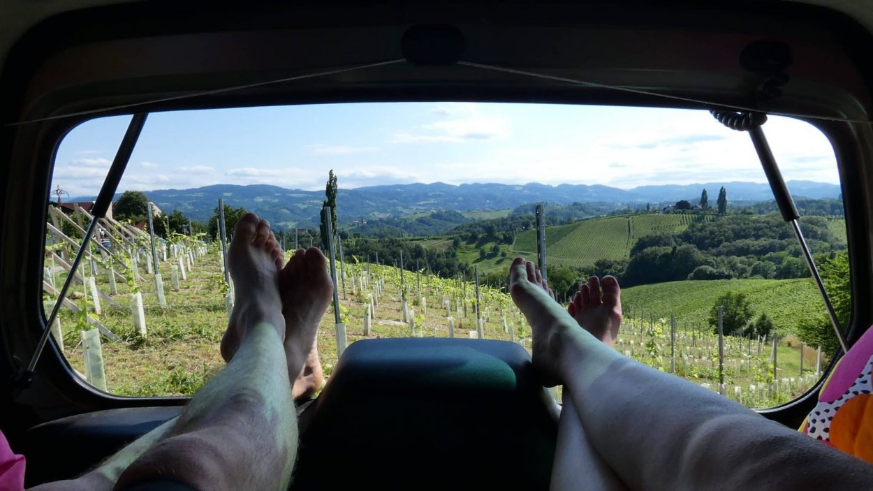 Campervan with vineyard view