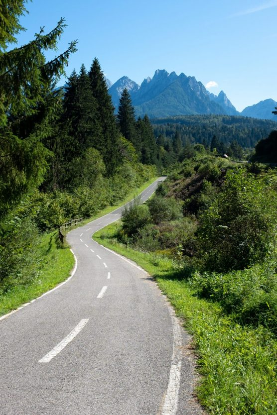 Cycling path through slovenian landscape