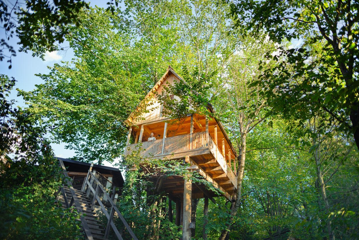 Garden Village Bled tree house