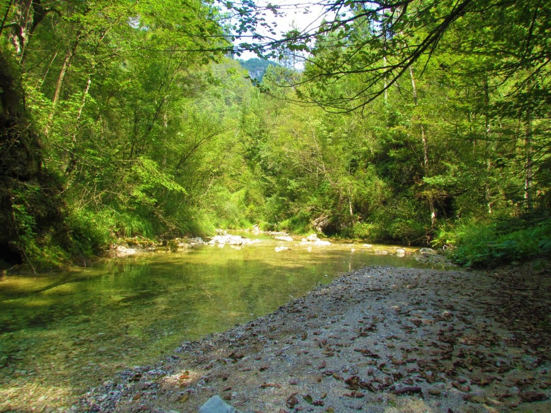 Iška river in Iška Gorge