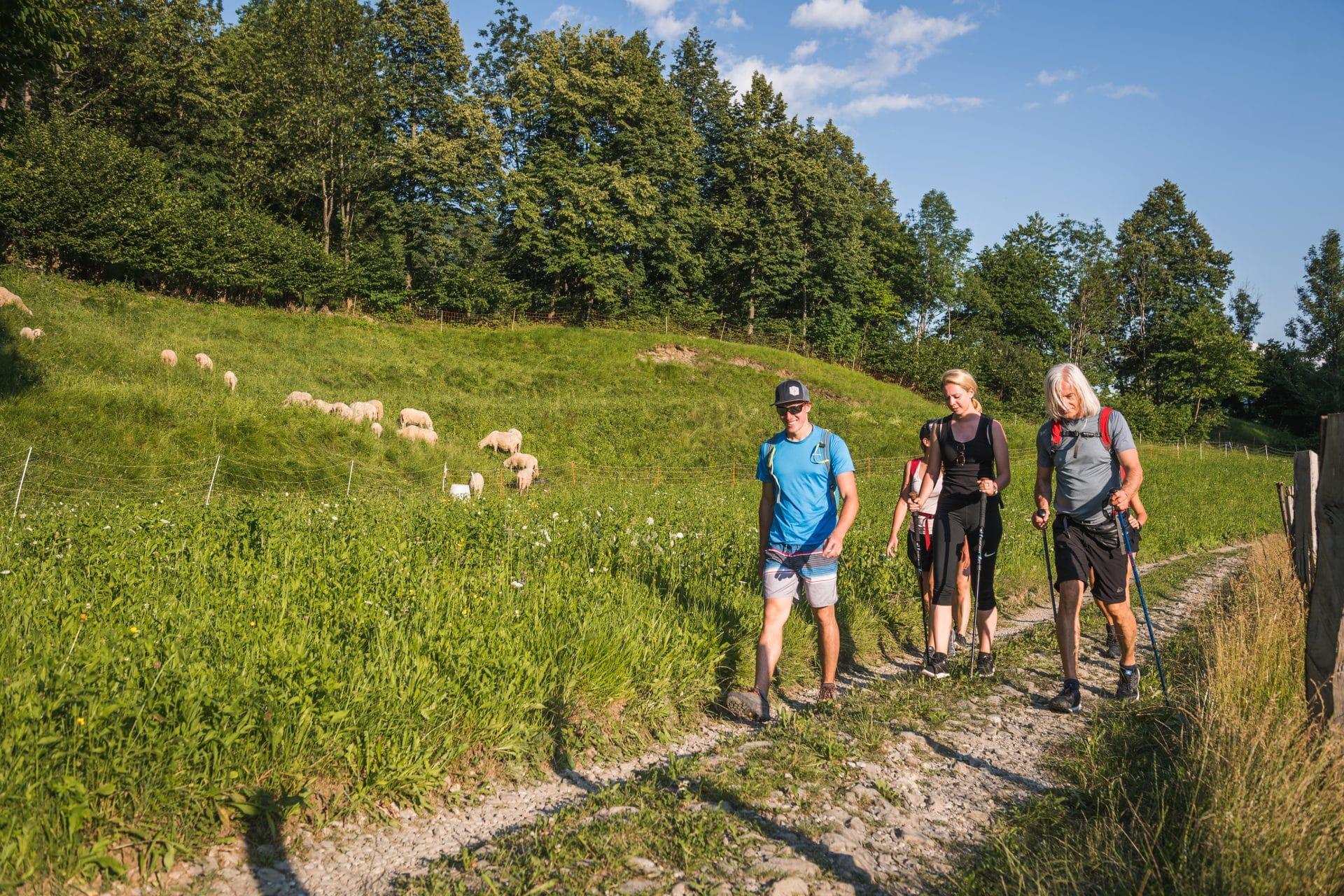 Excursionistas en Eslovenia
