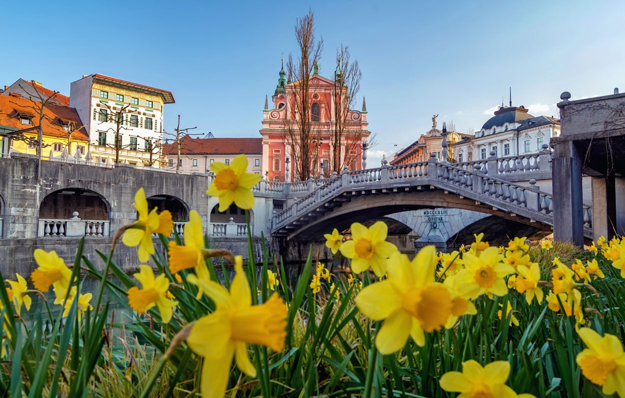 Spring at Ljubljana Three Bridges